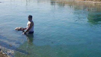 تصویر از جسد مردی مجهول الهویه در کانال شاه ولی دزفول کشف شد