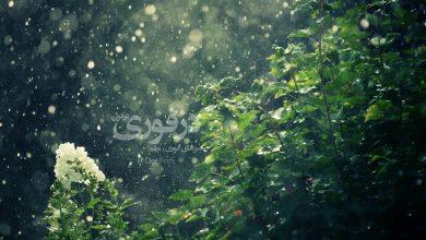تصویر از هواشناسی خوزستان نسبت به بارش رگبار پراکنده هشدار داد