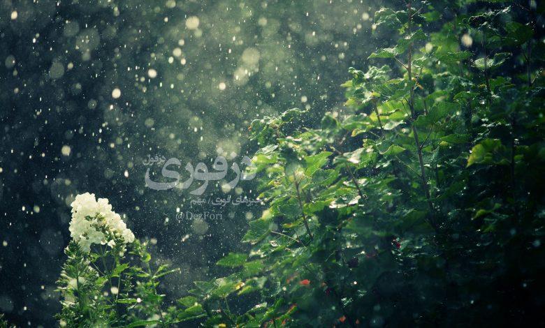 باران دزفوری dezfori.ir