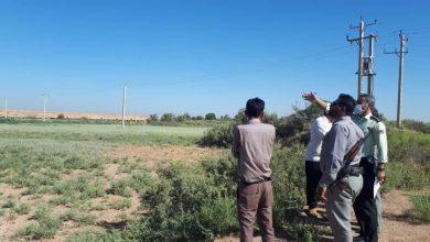تصویر از پنج هزار مترمربع از اراضی پارک ملی دز رفع تصرف شد