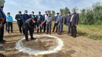 تصویر از احداث فاز دوم بزرگترین دامپروری جنوب غرب کشور در دزفول آغاز شد