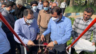 تصویر از با پیگیری ویژه سید احمد آوایی مشکل آب شرب شهیون و روستاهای این بخش حل شد